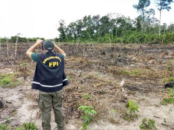 FPI do São Francisco usa imagens de satélite em atuação contra desmatamento