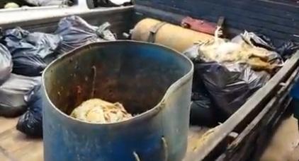 VÍDEO: Fiscalização prende donos de avícolas irregulares no bairro do Jacintinho