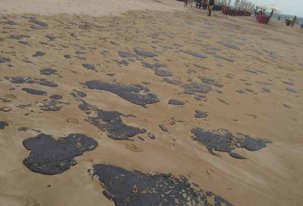POLUIÇÃO IMA alerta para cuidados com manchas de óleo nas praias: é importante evitar contato