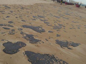Laboratório da Ufal aponta novo navio como suspeito de derramar óleo em praias do Nordeste
