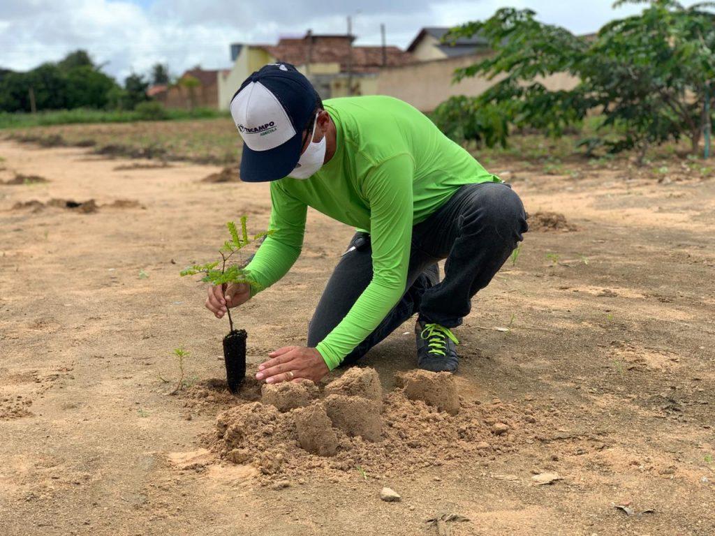 PREFEITURA E MVV PLANTAM CERCA DE 40 MUDAS NA ÁREA VERDE DE ARAPIRACA
