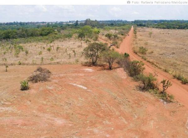 Grileiros devastam área de Cerrado que estava intacta há 4 mil anos no Distrito Federal